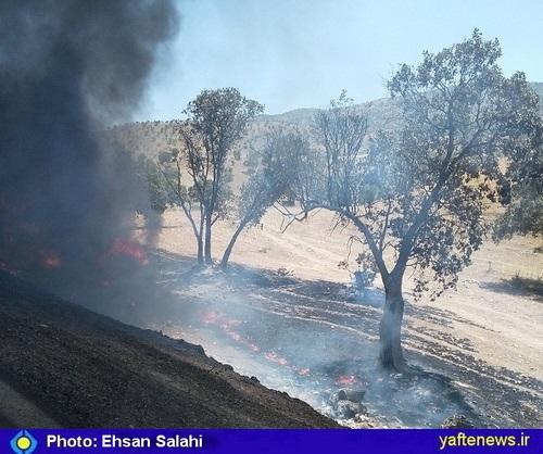 واژگونی یک دستگاه تانکر عراقی حامل سوخت در جاده کوهدشت – کرمانشاه + عكس