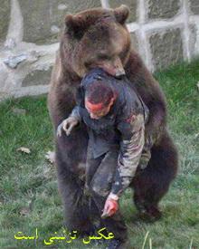 جدال خونین کوهنورد خرمآبادی با يك قلاده خرس!