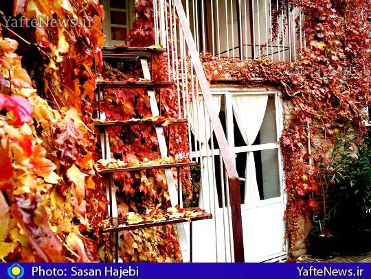 خانه بروجرد عکس ساسان حاجبی