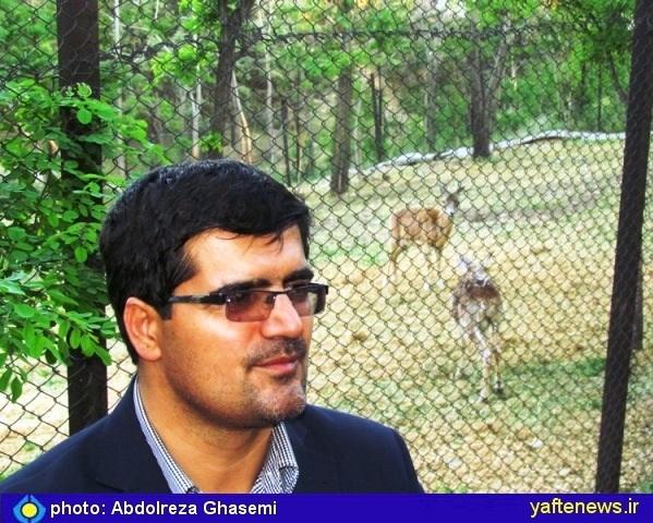 محمد حسین بازگیر مدیر کل محیط زیست تهران- یافته